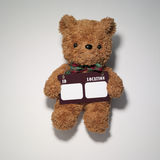 熊 免版税库存图片
