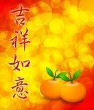 与您的愿望的橘子实现文本 免版税库存照片
