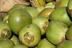 新鲜的椰子 免版税库存照片