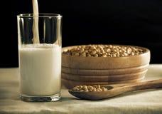 牛奶大豆 库存照片