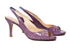 女性穿上鞋子夏天 图库摄影