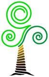 漩涡结构树 免版税库存照片