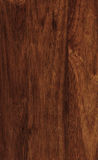 三叶胶纹理木头 库存照片