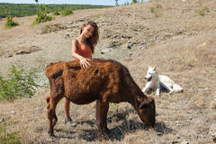 девушка коровы Стоковое фото RF
