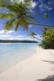 海滩热带库克群岛的天堂 免版税图库摄影