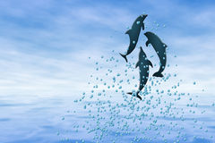 игра дельфина Стоковое фото RF