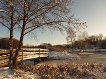 冬天在湖,威尔士乡下的雪场面 免版税库存照片
