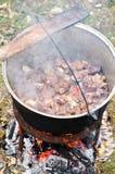 传统猪肉的炖煮的食物 免版税库存图片