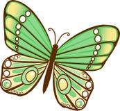 зеленый цвет бабочки Стоковое Изображение RF