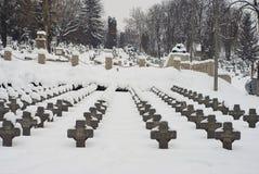 欧洲极端冬天 库存图片