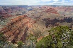 оправа каньона грандиозная южная Стоковое Изображение