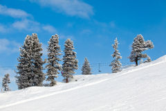 οι ανελκυστήρες εδρών της Αυστρίας το σκι Στοκ Εικόνες