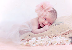 婴孩位于的新出生的枕头纵向 免版税库存照片