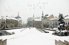 欧洲极端冬天 免版税库存图片