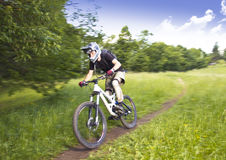 下坡骑自行车的人 免版税图库摄影