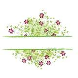 花卉框架春天 免版税库存照片