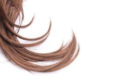 棕色头发 免版税库存图片