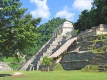 密林玛雅人金字塔 库存图片