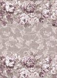 退色的花卉模式 库存照片