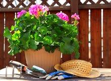 садовничая инструменты Стоковое Изображение