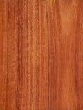 樱桃桃花心木纹理木头 库存图片