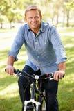 人骑马自行车在公园 免版税库存照片