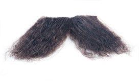 髭 库存图片