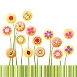 抽象看板卡五颜六色的花问候春天 免版税库存照片