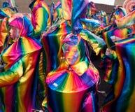 καρναβάλι Κάτω Χώρες Στοκ Εικόνες