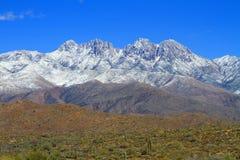 在沙漠山的雪 库存图片