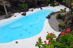 热带蓝色庭院池的游泳 免版税图库摄影