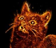 神秘的猫 库存图片
