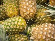 ананасы Стоковая Фотография RF
