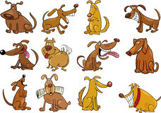 установленные собаки шаржа Стоковая Фотография RF