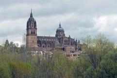 大教堂覆以圆顶其萨拉曼卡 免版税库存图片