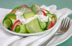 黄瓜沙拉用萝卜和鲕梨奶油沙司 免版税库存图片