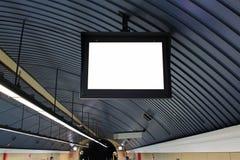 Κάπρος διαφημίσεων Στοκ Φωτογραφία
