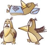 鸟 库存图片