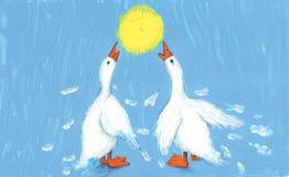 υποστηρίξτε τις χήνες δύο Στοκ εικόνες με δικαίωμα ελεύθερης χρήσης