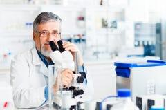 实验室男性研究员前辈 免版税库存图片