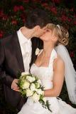 亲吻红色玫瑰嫩婚礼 免版税库存图片