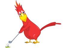 滑稽的高尔夫球鹦鹉 免版税库存照片