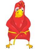 饮食滑稽的鹦鹉 免版税库存图片