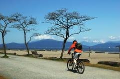 海滩骑自行车的人 免版税库存照片