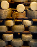 пармезан сыра Стоковая Фотография RF