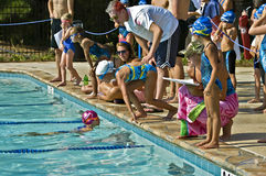 ο ανταγωνισμός συναντιέται κολυμπά Στοκ εικόνα με δικαίωμα ελεύθερης χρήσης