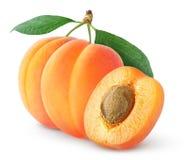 абрикосы Стоковое Изображение