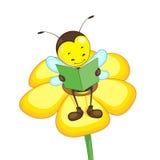 чтение цветка пчелы Стоковые Изображения