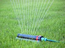草坪浇灌 免版税库存照片