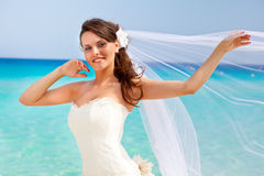 新新娘和蓝色海运 库存图片